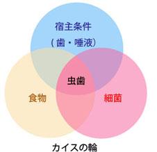 2012_file2